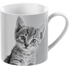 Creative Tops Porcelánový hrnek Kitten, 300 ml
